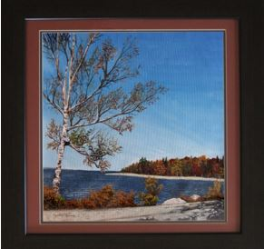 Birch on the Lake